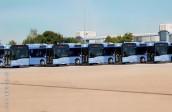 Eine Herausforderung war es, die Busse so schön hinzurangieren.