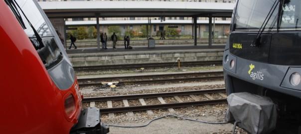 Platzhirsch DB Regio und Mitbewerber agilis
